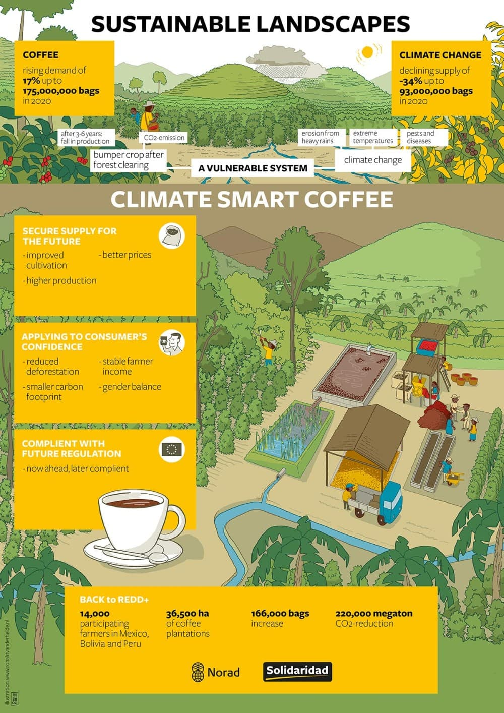 infographics sustainability landscapes coffee roaster crops Mexico Bolivia Peru diseases hand drawn conference Solidaridad climate smart agriculture water drought communities story telling rainforest Solidaridad NGO ontwikkelingssamenwerking